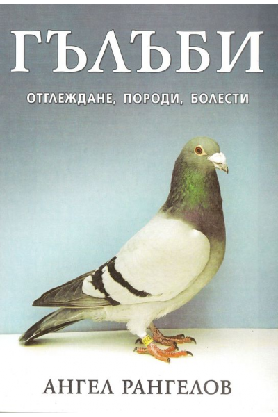 Гълъби. Отглеждане, породи, болести